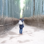 Bamboo forest at Arashiyama near Kyoto Japan 2018