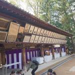 Temple market Kyoto Japan 2018