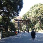 Yoyogi park Tokyo Japan 2018