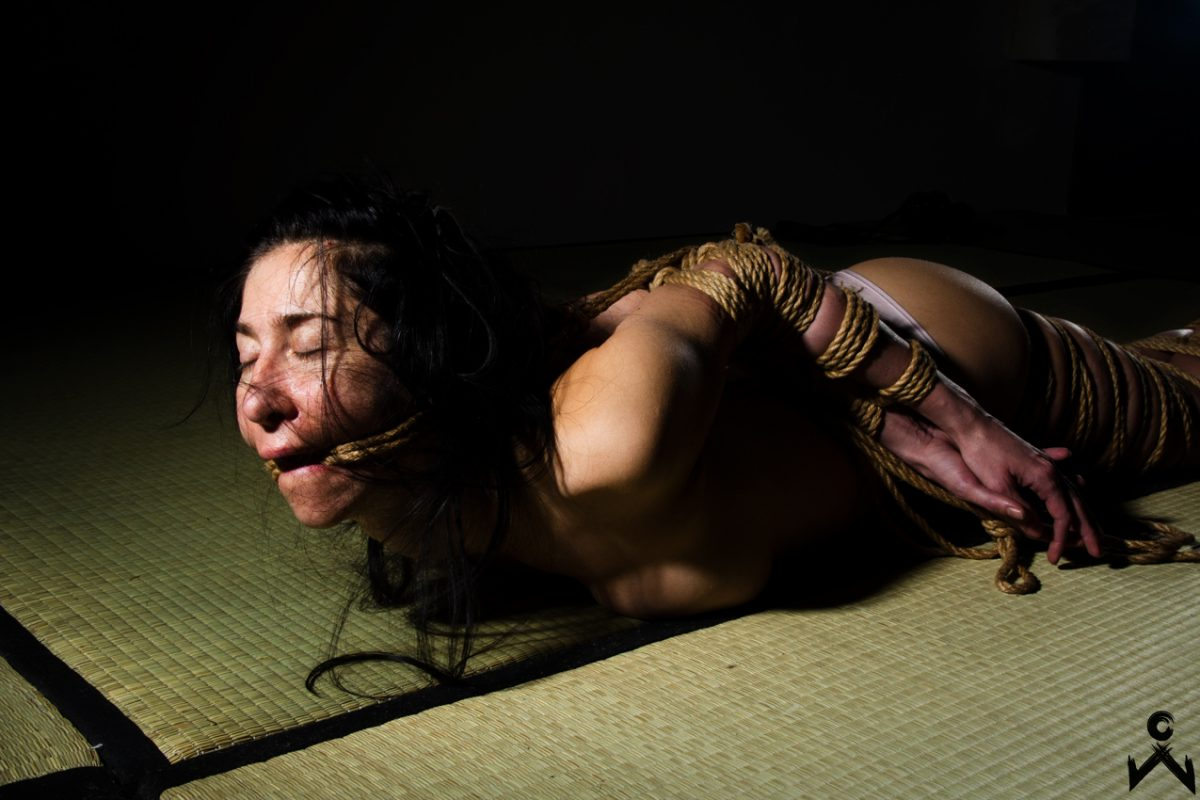 NawaTeNeko tied by WykD Dave, Photography by Clover Brook Directed by Sugiura Norio